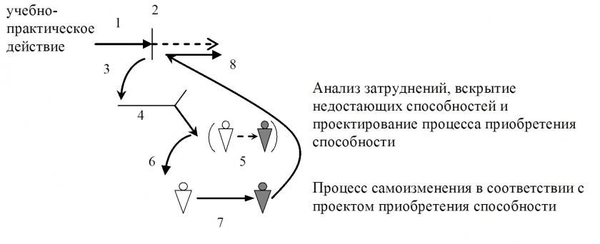 Фазы процесса саморазвития
